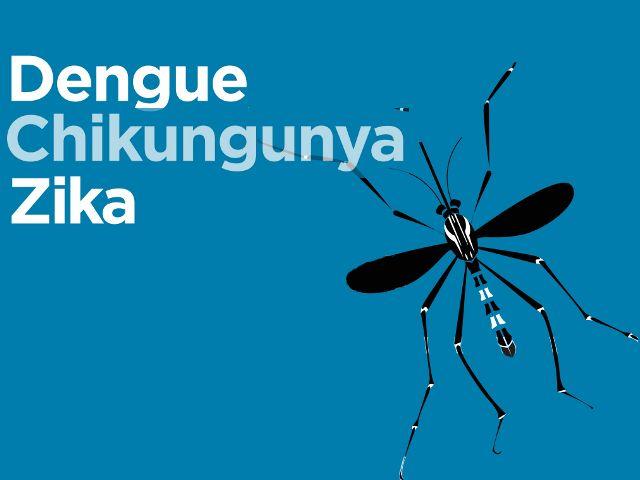 Enfermedades como el dengue , el chikungunya y el zika que están